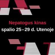 """Festivalis """"Nepatogus kinas"""" 2017 Utenoje"""
