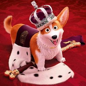 """Mylimiausias Elžbietos II šuo nusipelnė atskiro filmo: į kino teatrus atkeliauja """"Karalienės korgis"""""""